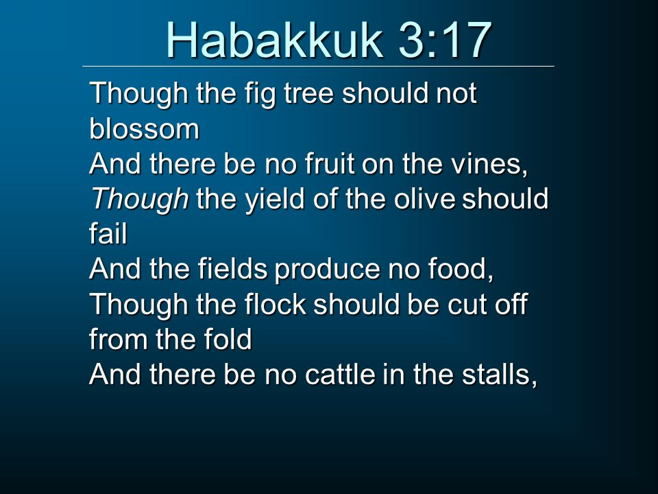 Habakkuk 3:17 Though the fig tree should not blossom