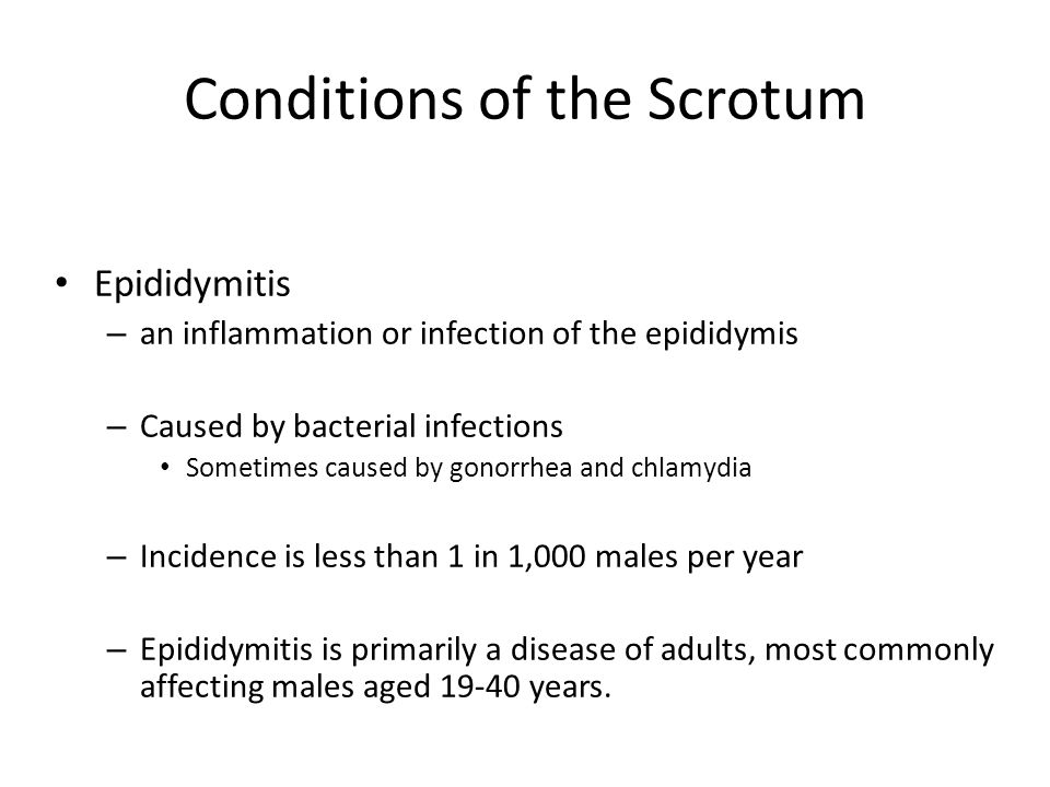 Conditions of the Scrotum