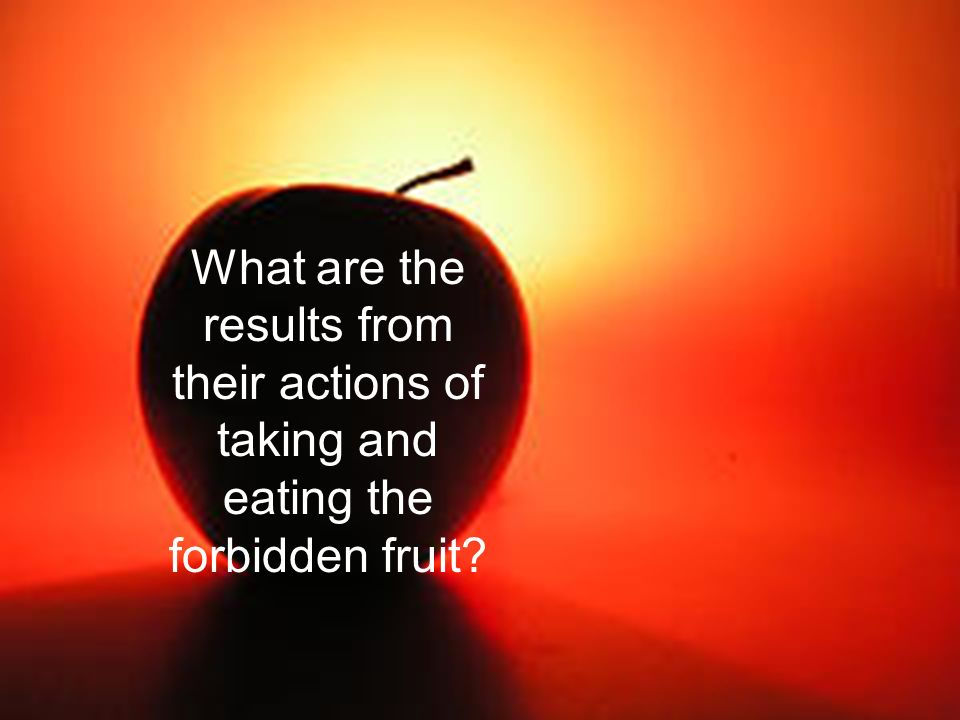 What are the results from their actions of taking and eating the forbidden fruit