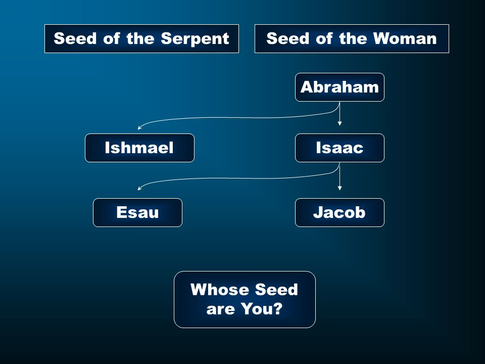 Seed of the Serpent Seed of the Woman Abraham Ishmael Isaac Esau Jacob Whose Seed are You