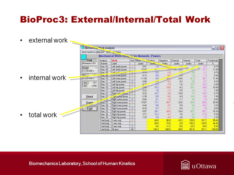 BioProc3: External/Internal/Total Work