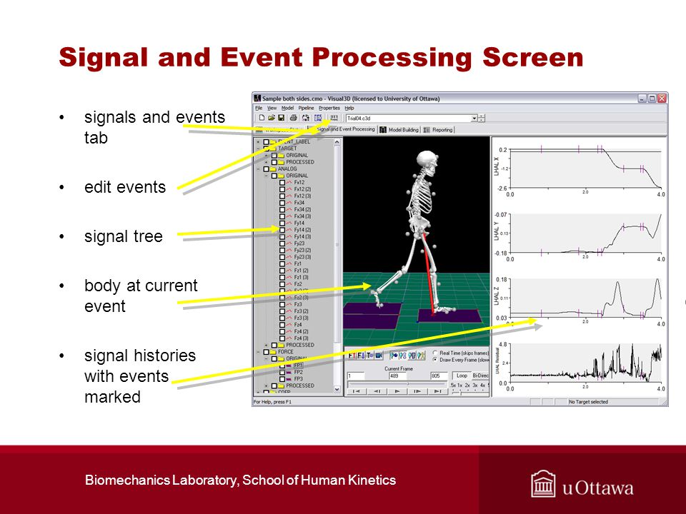 Signal and Event Processing Screen