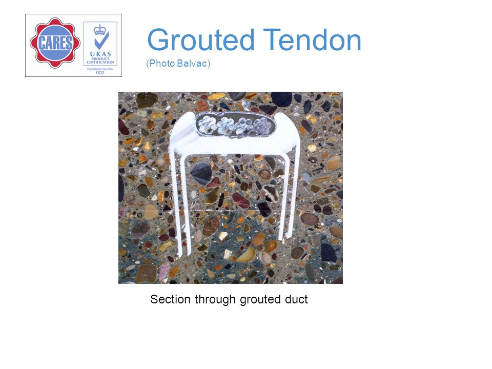 Grouted Tendon (Photo Balvac)