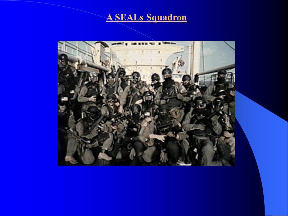A SEALs Squadron