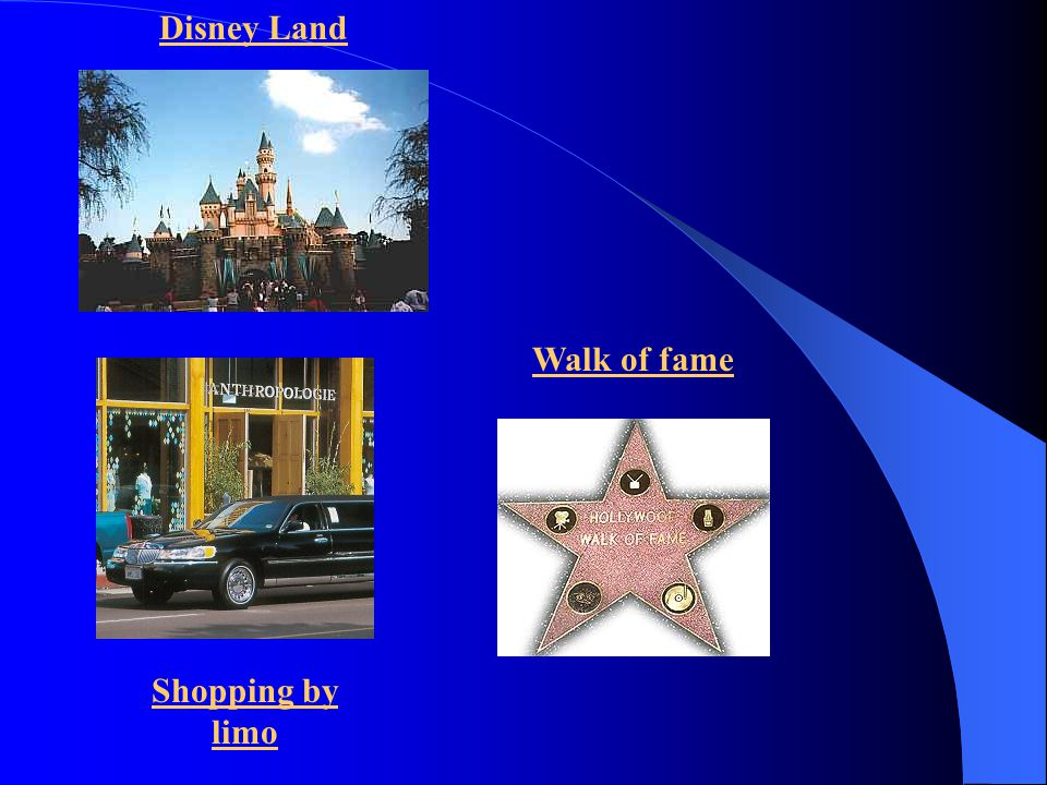Disney Land Walk of fame Shopping by limo