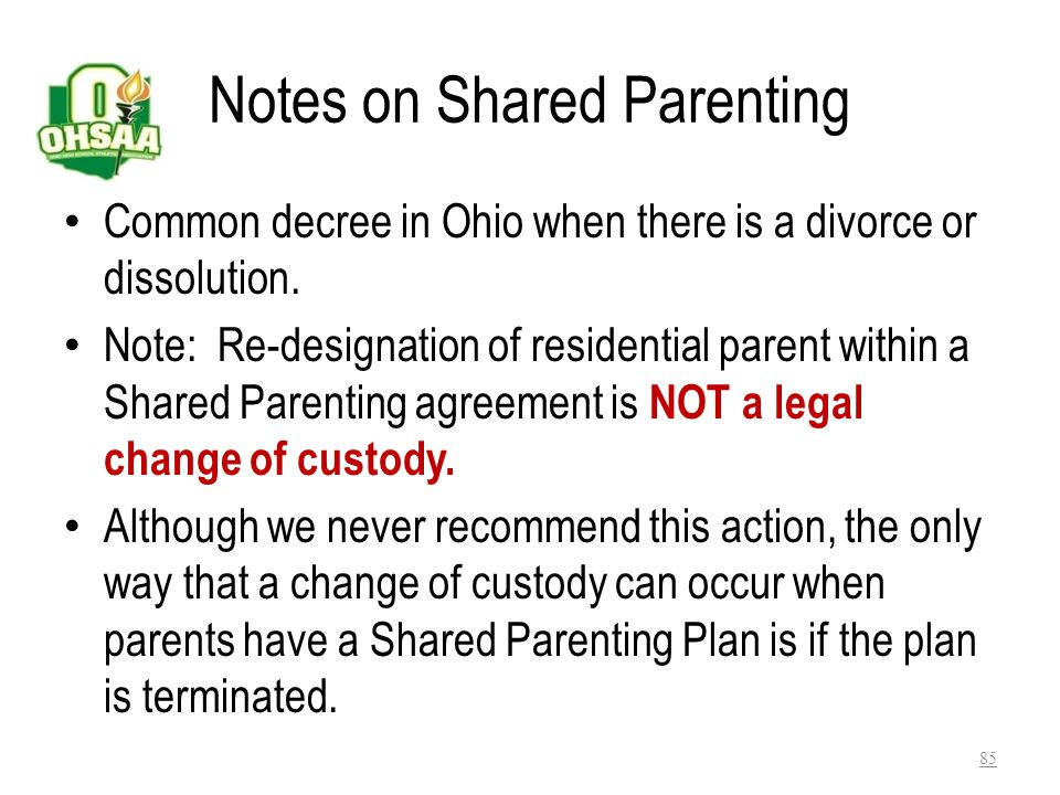 Notes on Shared Parenting