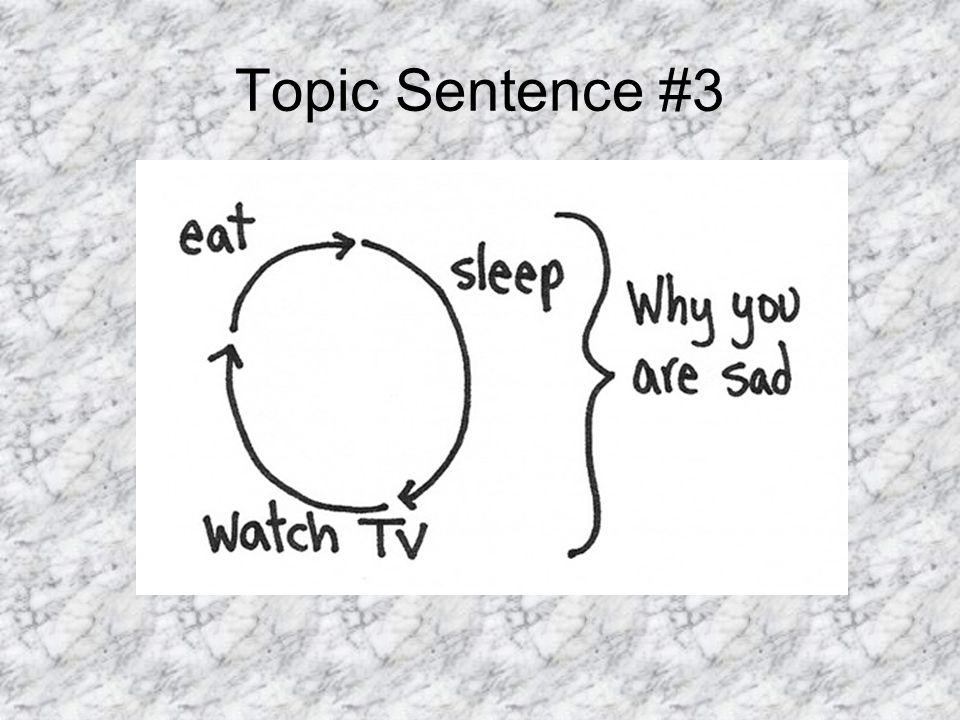 Topic Sentence #3