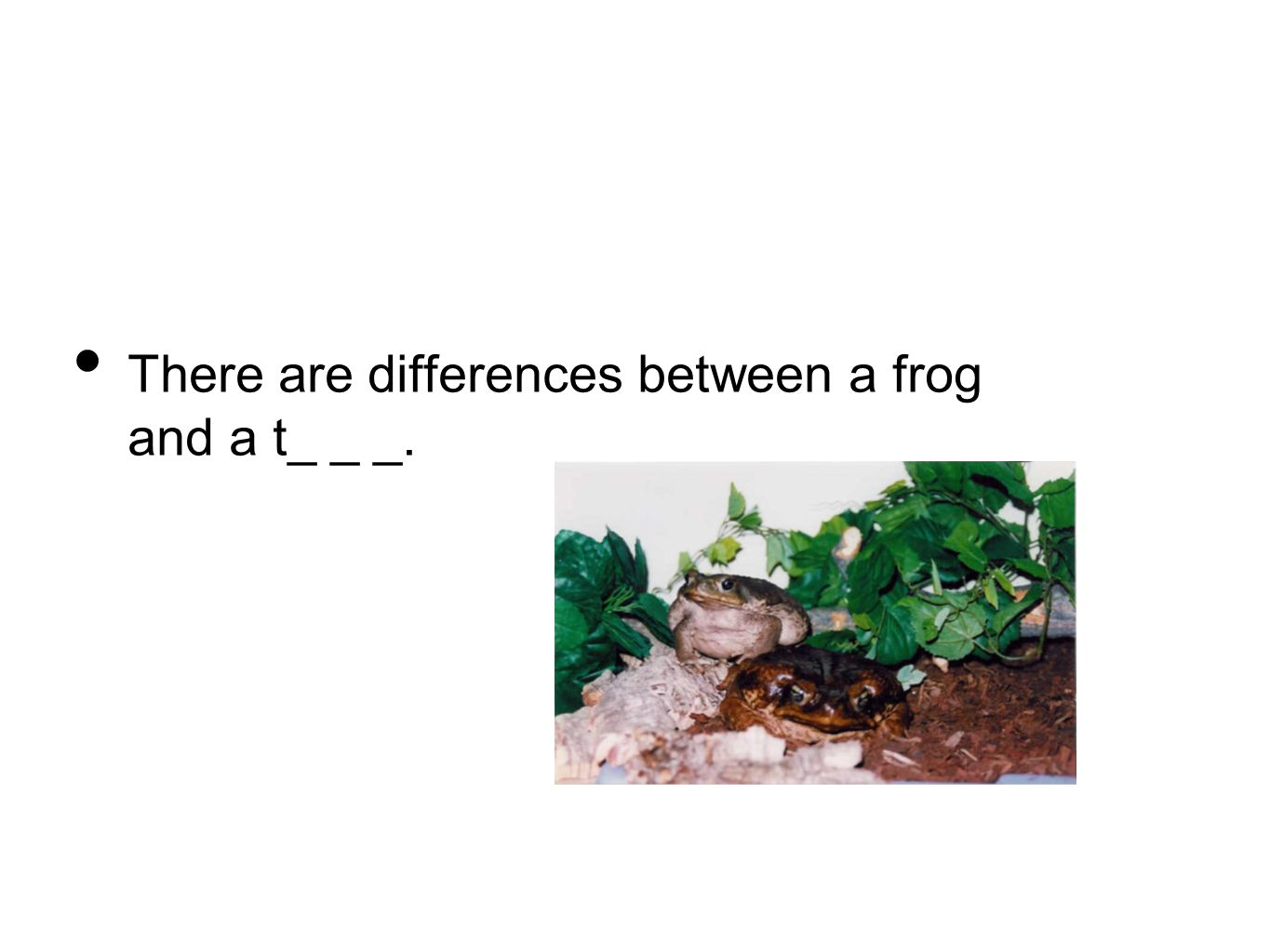 There are differences between a frog and a t_ _ _.