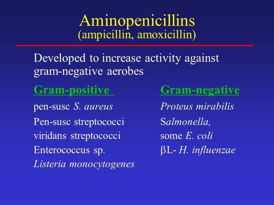 Aminopenicillins (ampicillin, amoxicillin)