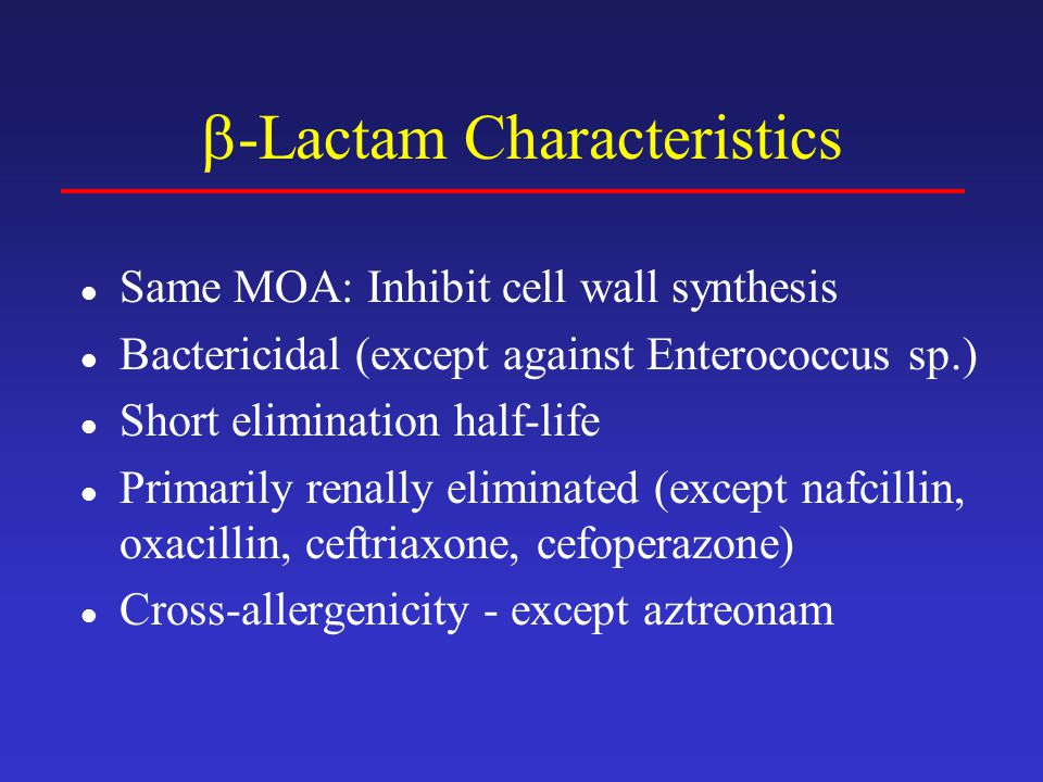 -Lactam Characteristics