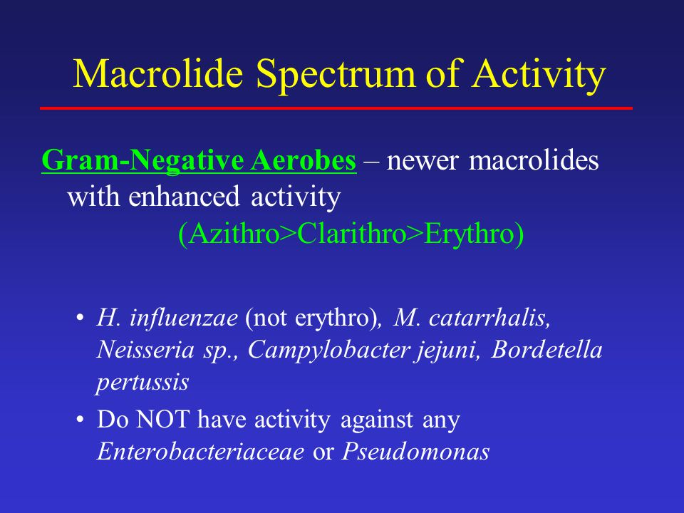 Macrolide Spectrum of Activity