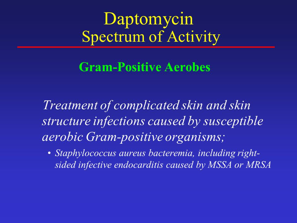 Daptomycin Spectrum of Activity