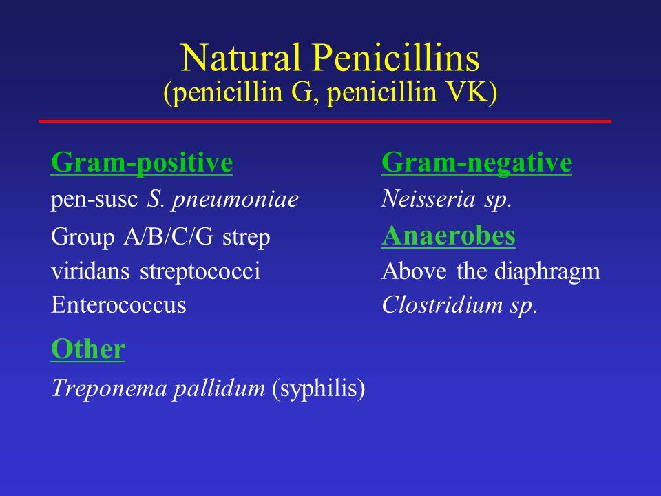 Natural Penicillins (penicillin G, penicillin VK)