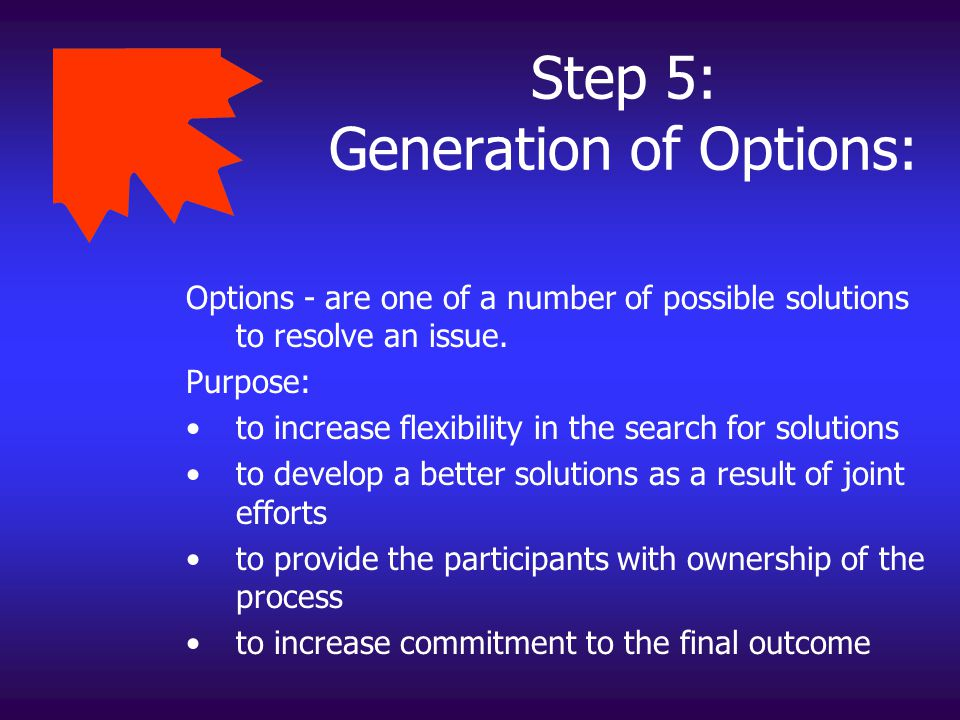 Step 5: Generation of Options: