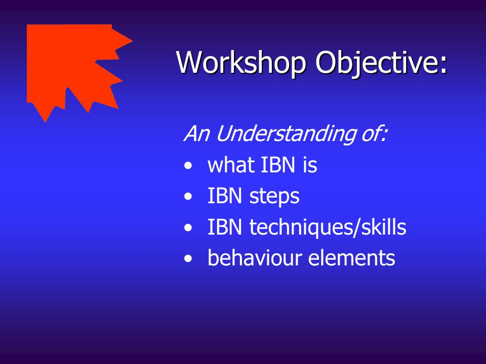 Workshop Objective: An Understanding of: what IBN is IBN steps