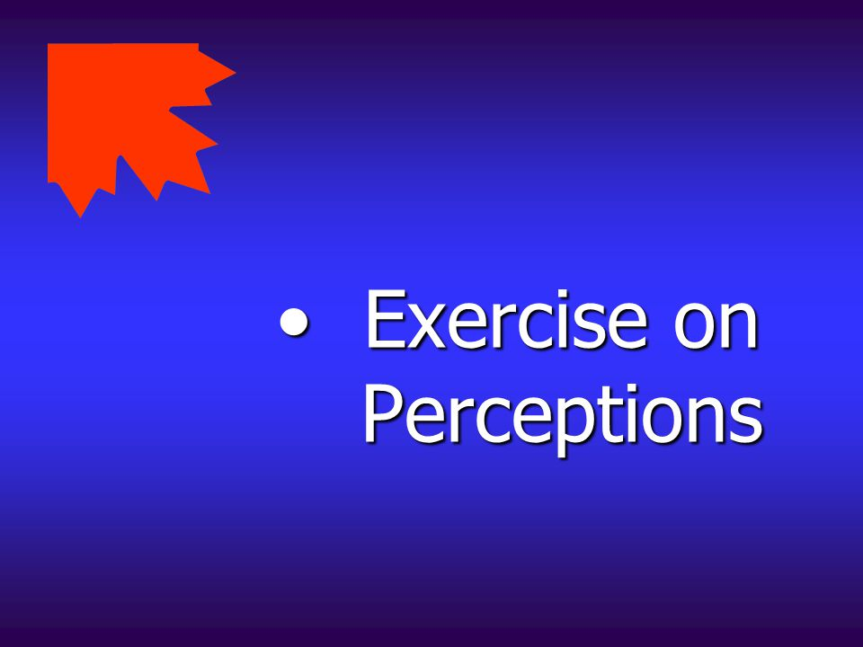 Exercise on Perceptions