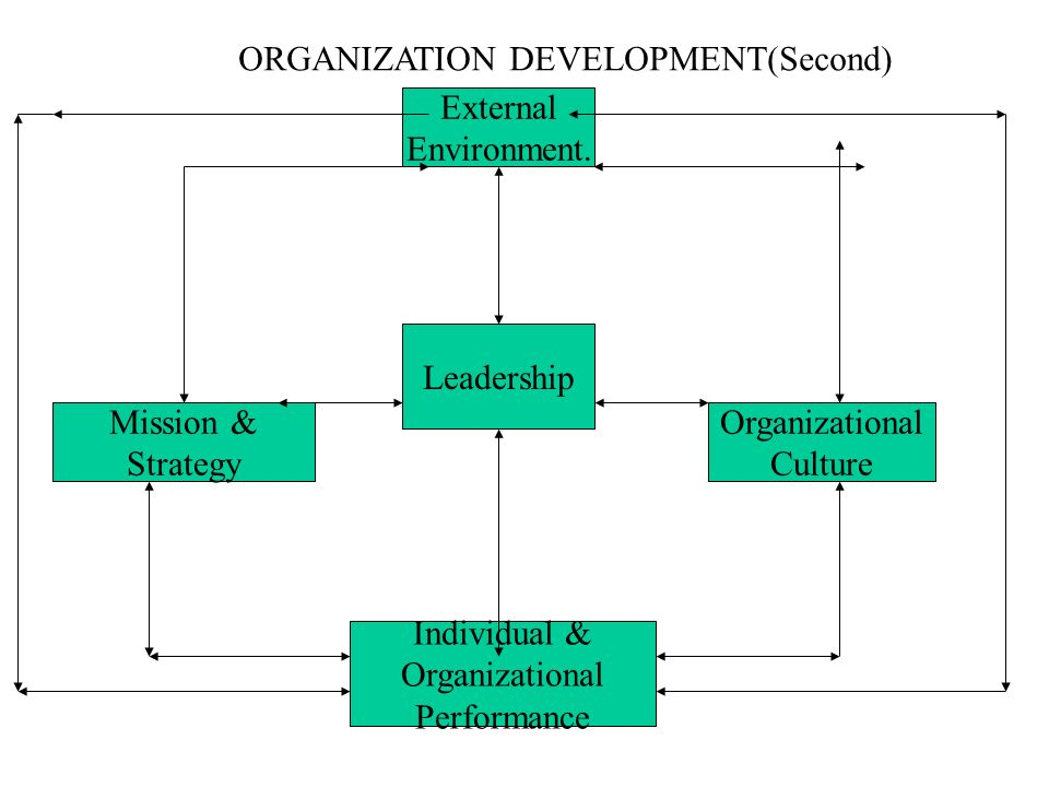 ORGANIZATION DEVELOPMENT(Second)