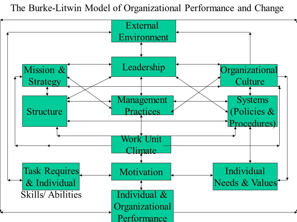 The Burke-Litwin Model of Organizational Performance and Change