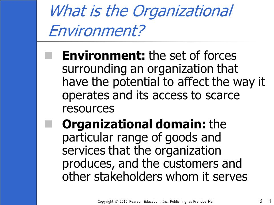 What is the Organizational Environment