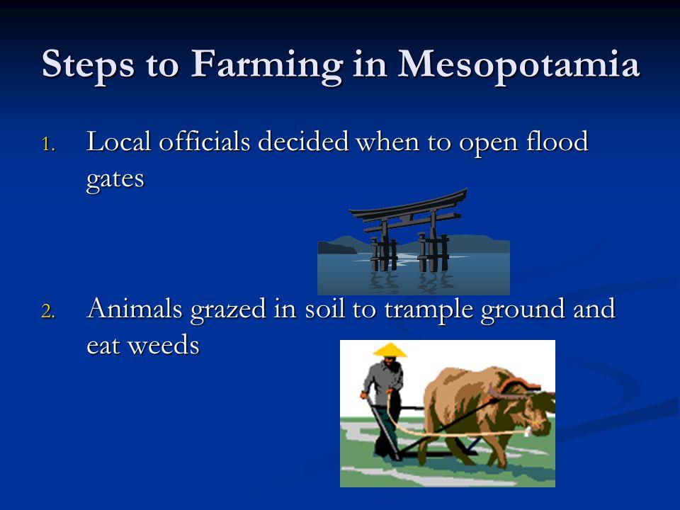 Steps to Farming in Mesopotamia