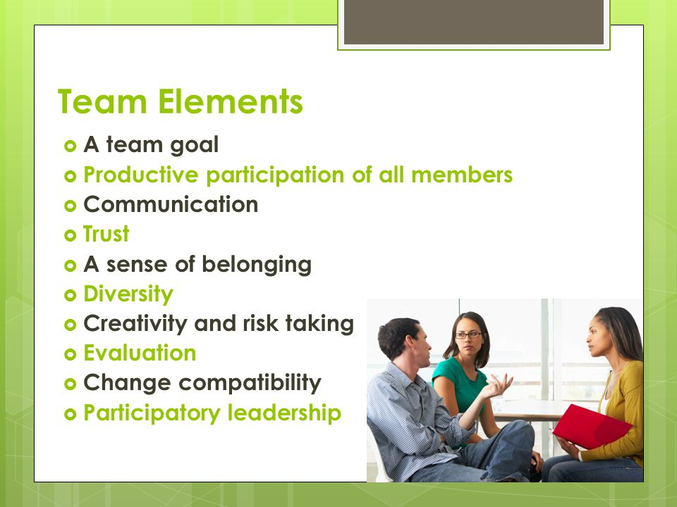 Team Elements A team goal Productive participation of all members