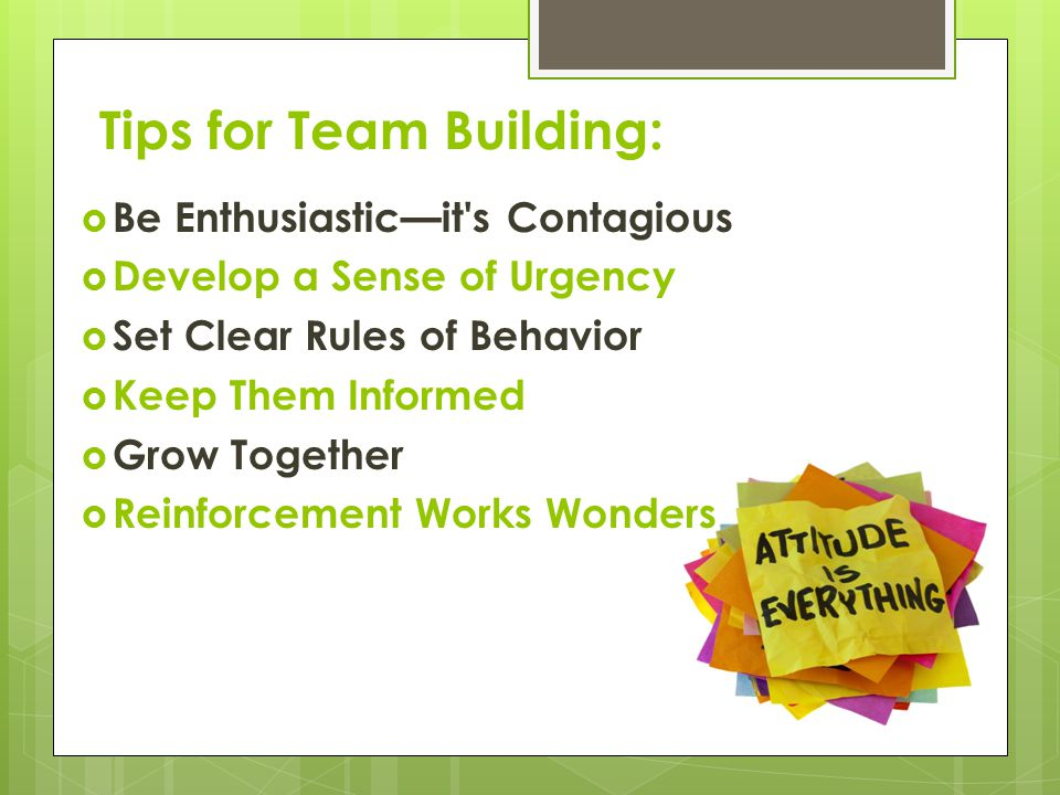 Tips for Team Building: