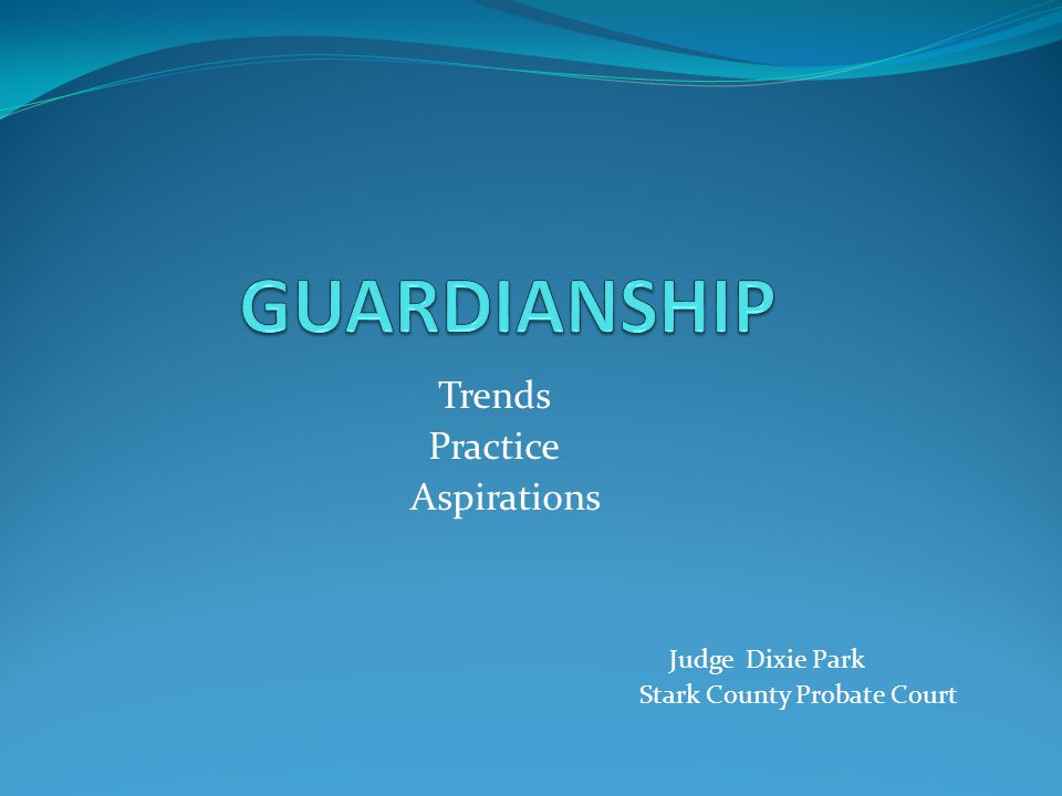 GUARDIANSHIP Trends Practice Aspirations Judge Dixie Park