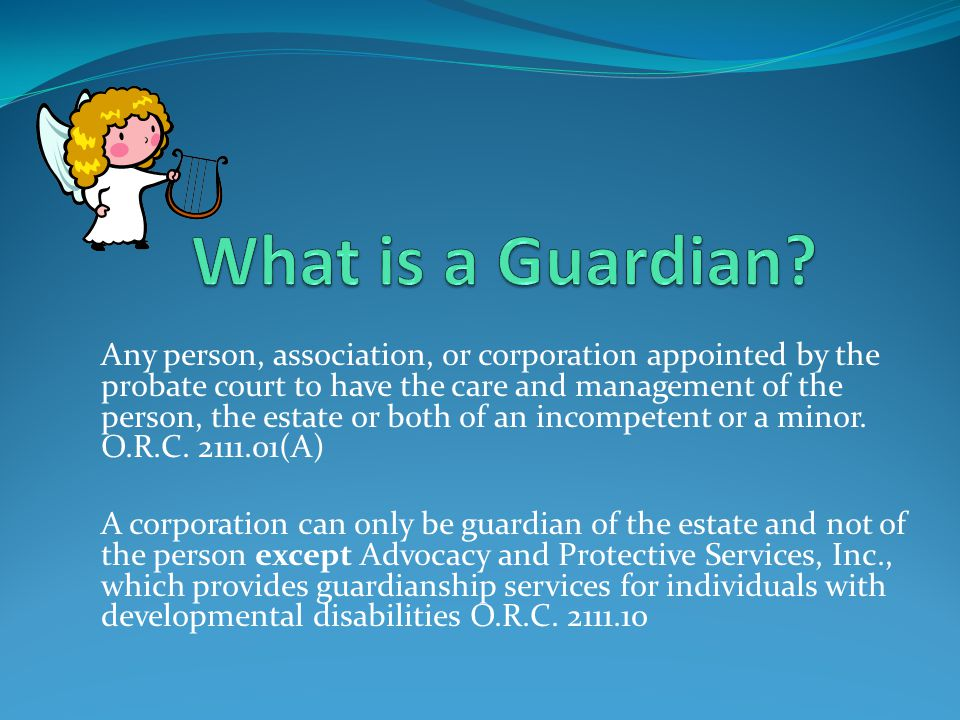 What is a Guardian