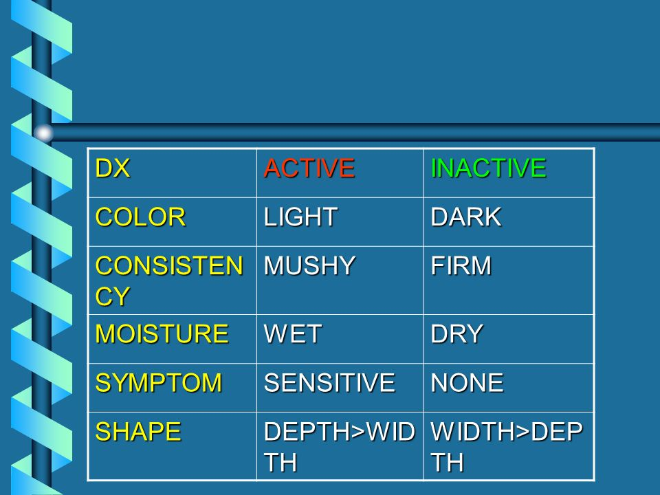DX ACTIVE. INACTIVE. COLOR. LIGHT. DARK. CONSISTENCY. MUSHY. FIRM. MOISTURE. WET. DRY. SYMPTOM.