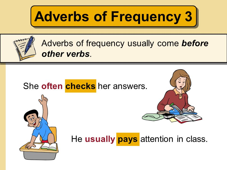 Adverbs of Frequency 3Adverbs of frequency usually come before other verbs. She often checks her answers.
