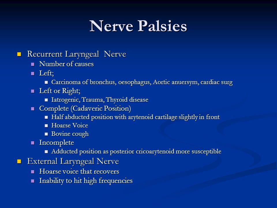 Nerve Palsies Recurrent Laryngeal Nerve External Laryngeal Nerve
