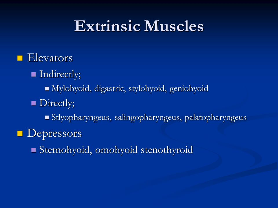 Extrinsic Muscles Elevators Depressors Indirectly; Directly;
