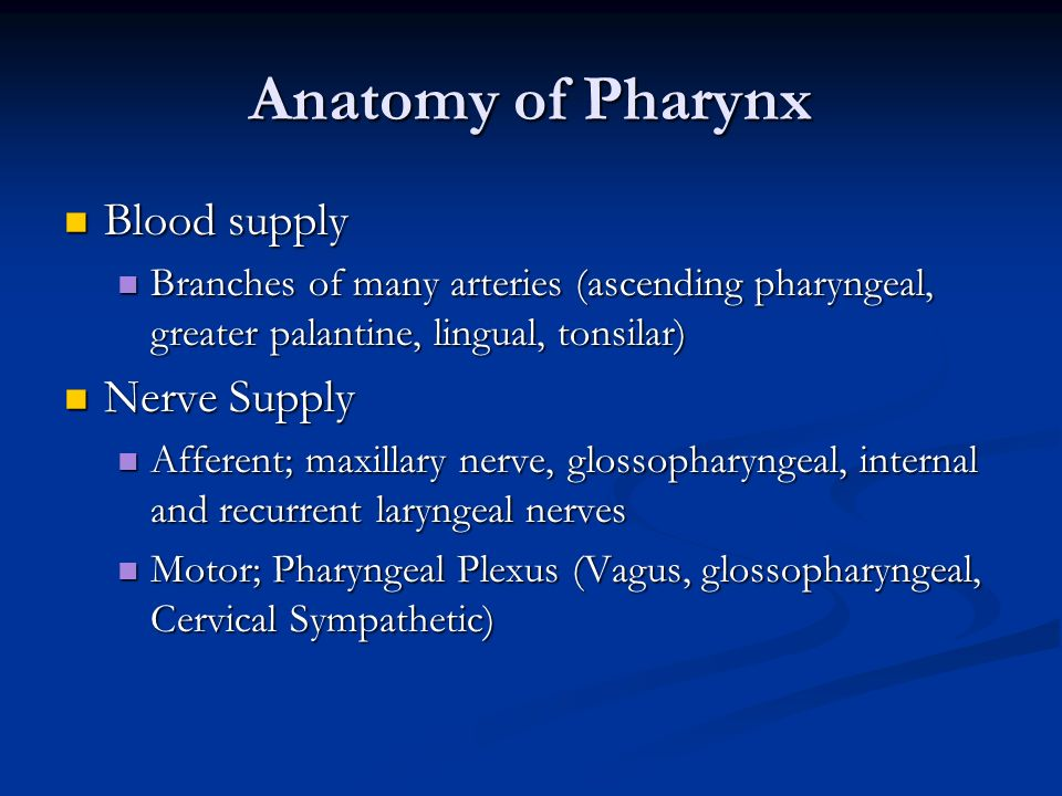 Anatomy of Pharynx Blood supply Nerve Supply