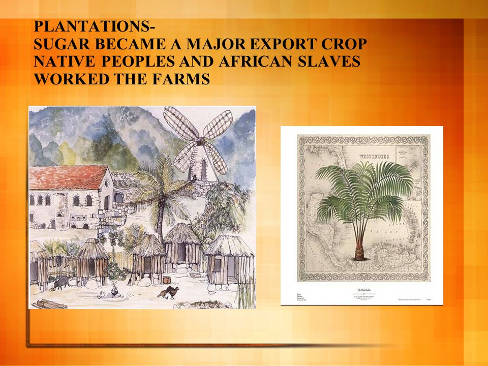 PLANTATIONS- SUGAR BECAME A MAJOR EXPORT CROP NATIVE PEOPLES AND AFRICAN SLAVES WORKED THE FARMS