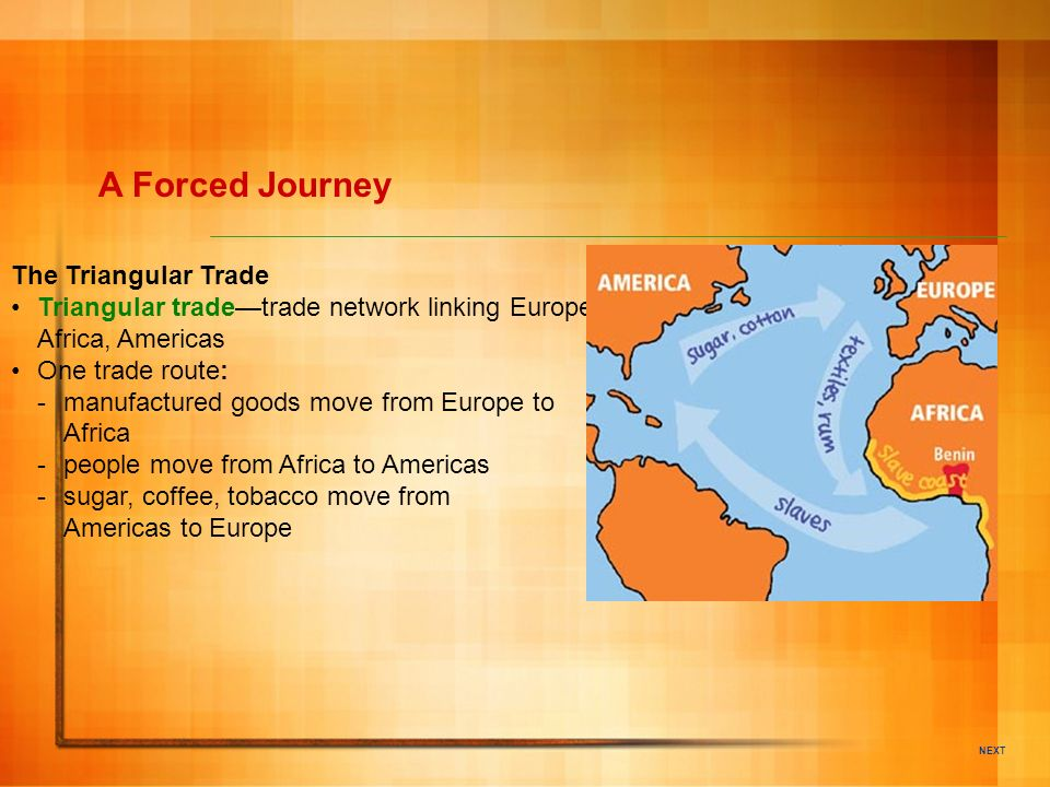A Forced Journey The Triangular Trade