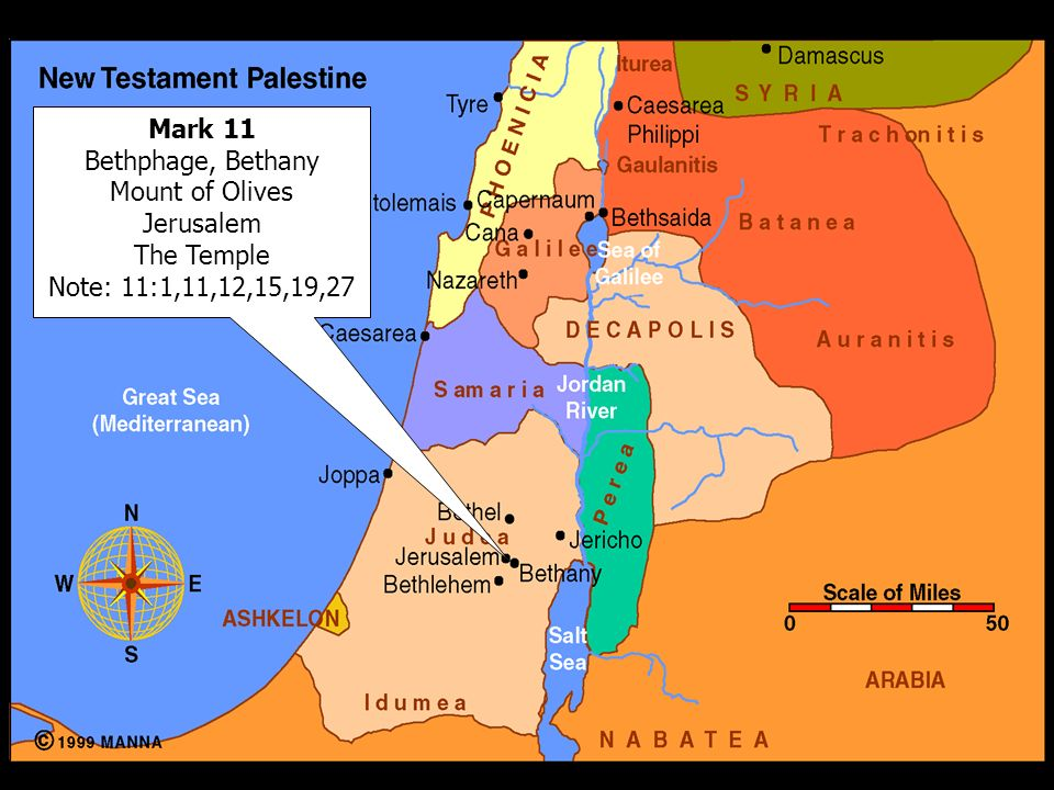 Mark 11 Bethphage, Bethany Mount of Olives Jerusalem The Temple Note: 11:1,11,12,15,19,27