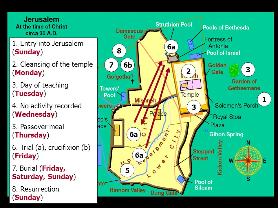 1. Entry into Jerusalem (Sunday)