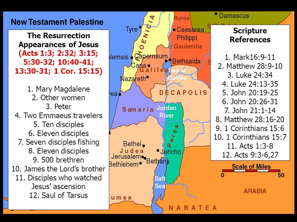 7. Seven disciples fishing 8. Eleven disciples 9. 500 brethren