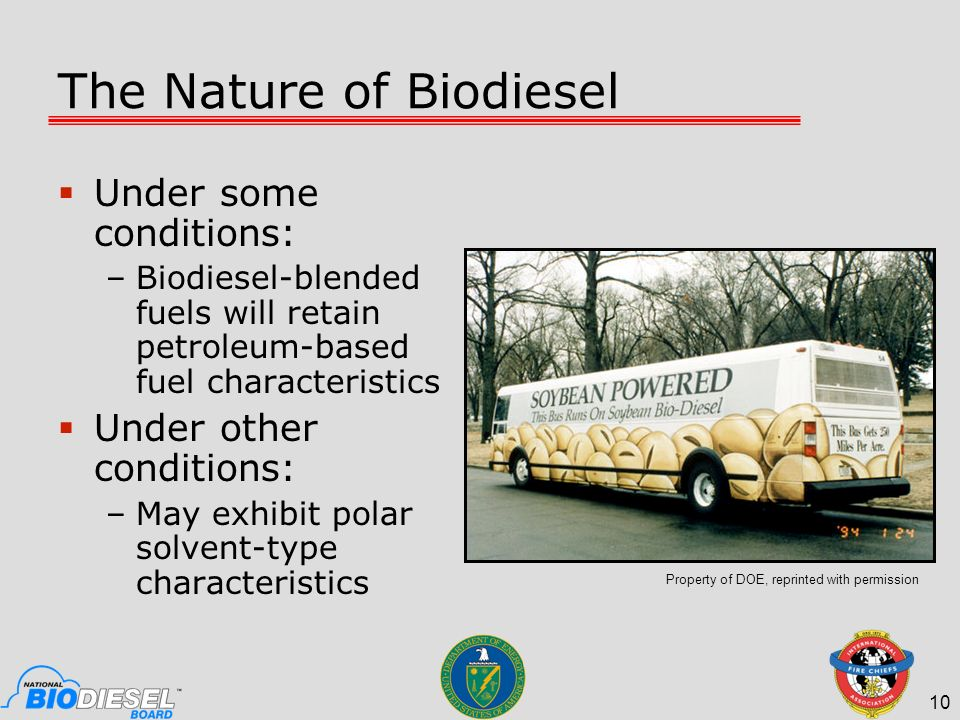 The Nature of Biodiesel