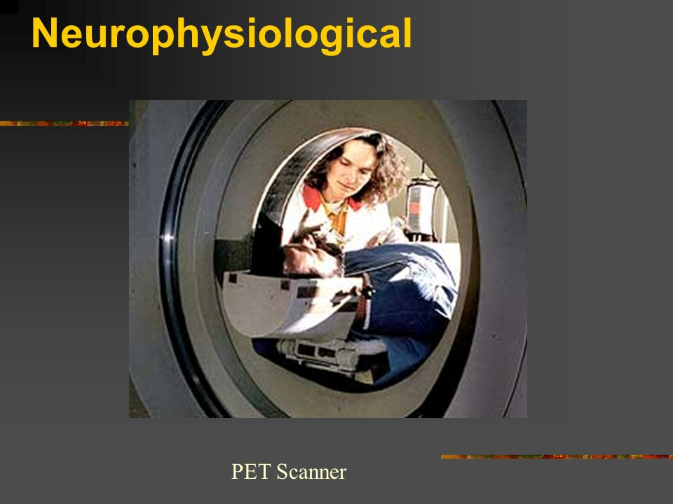 Neurophysiological PET Scanner