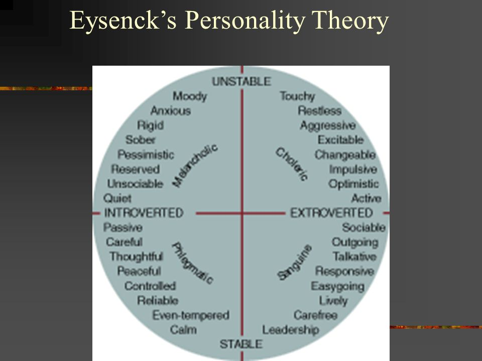 personality theories essay Free coursework on traits approach to personality development from essayukcom, the uk essays company for essay, dissertation and coursework writing.