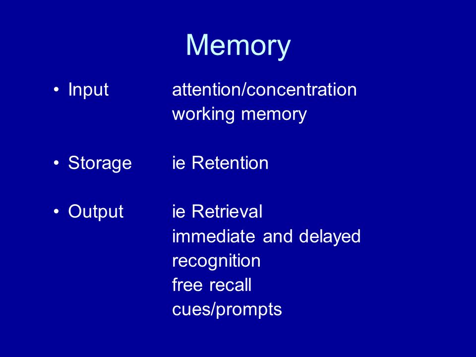 Memory Input attention/concentration working memory