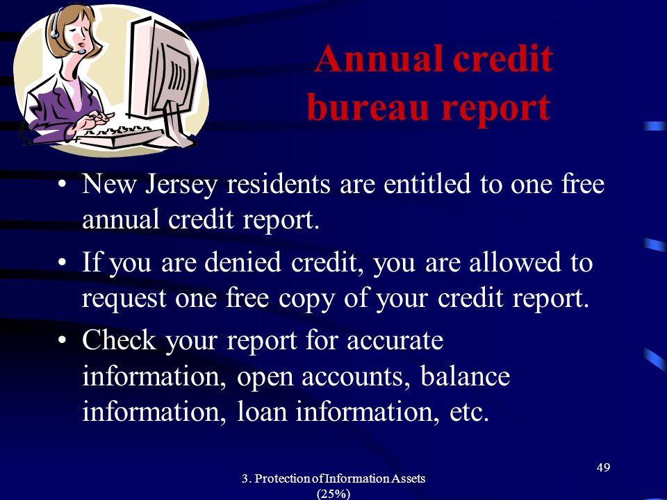 Annual credit bureau report