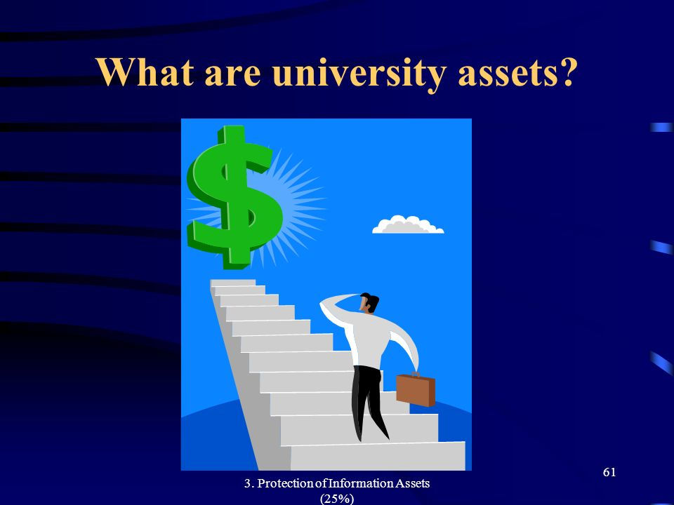 What are university assets