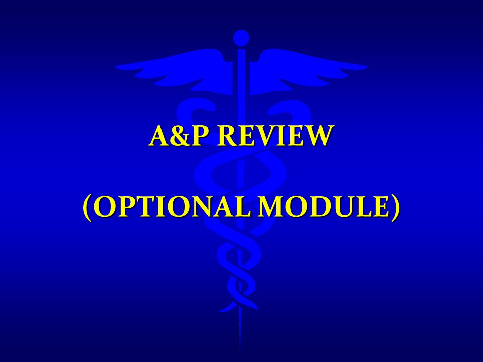 A&P Review (Optional Module)