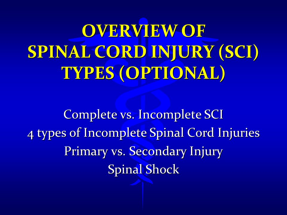 Overview of Spinal Cord Injury (SCI) Types (Optional)