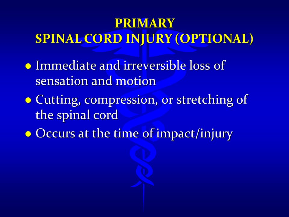 Primary Spinal Cord Injury (Optional)