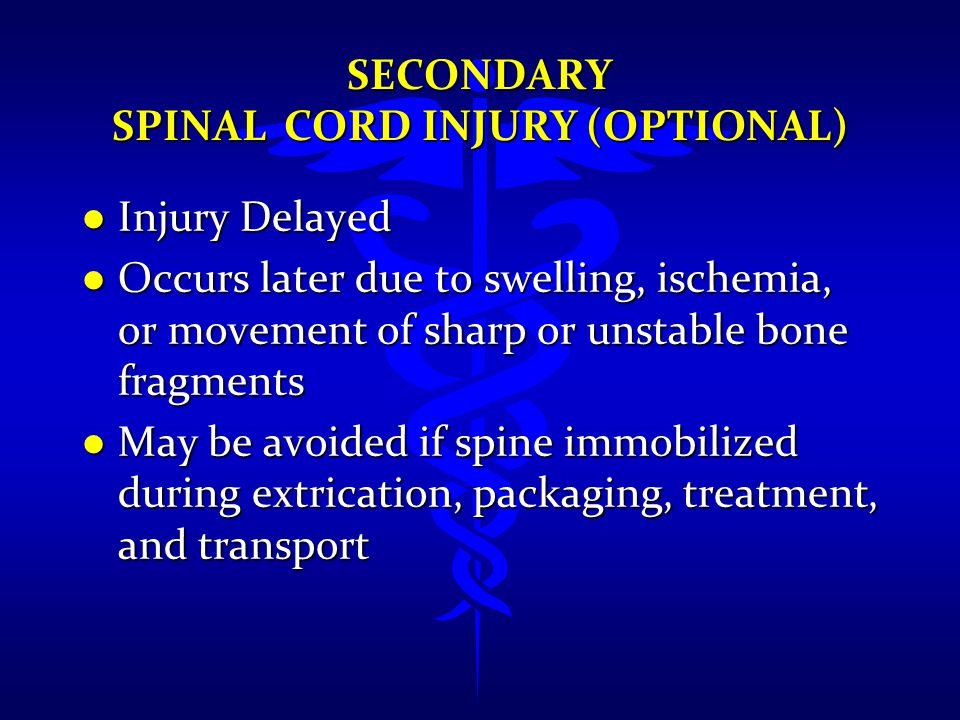 Secondary Spinal Cord Injury (Optional)