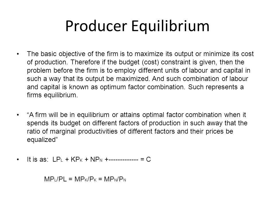 Producer Equilibrium