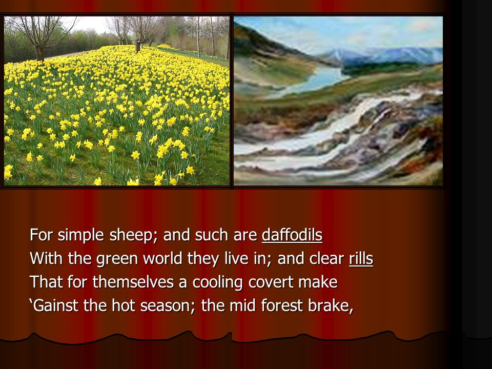 For simple sheep; and such are daffodils